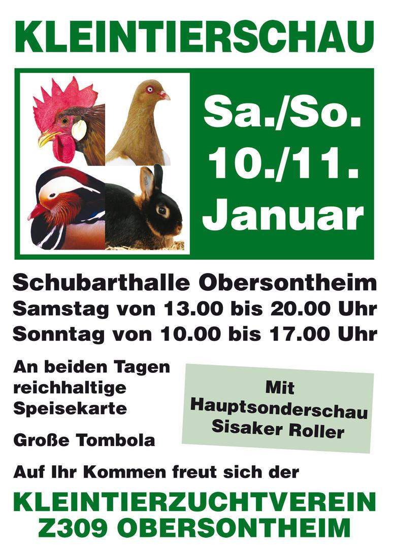 Kleintierzuchtverein Obersontheim Obersontheim 2015